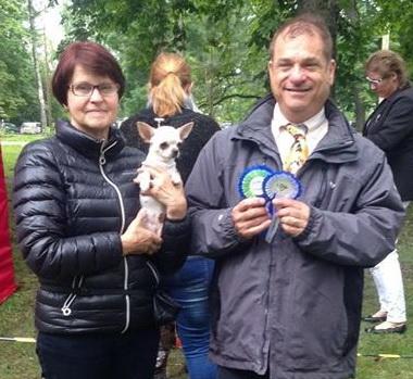 VinzentaTemi - Chihuahua kennel in Estonia